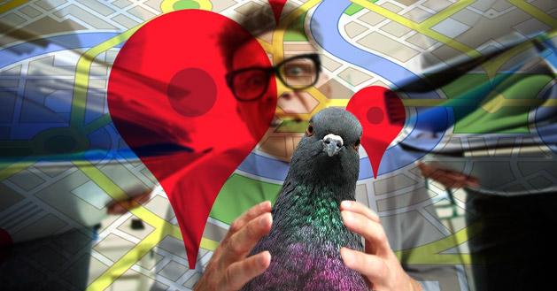 3 điều nên làm để đối phó với thuật toán Pigeon