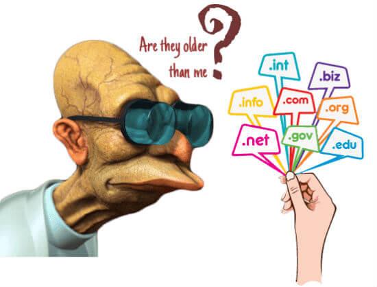 Kiểm tra tuổi đời cho tên miền (domain) một cách dễ nhất